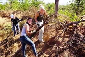 Vrijwilligerswerk in Zuid-Afrika: Natuurbehoud & Milieu