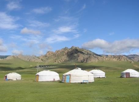 Vrijwilligerswerk in Mongolië