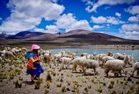 Vrijwilligerswerk in Midden en Zuid-Amerika: Peru