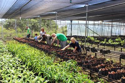 Vrijwilligers op Natuurbehoud project in Ecuador in bomenkwekerij
