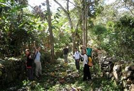 Archeologische projecten in het buitenland: Peru