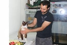 Kijk mee met een lokale dierenarts in Mexico als je vrijwilligerswerk doet op het diergeneeskunde project.