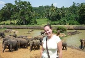 Vrijwilligerswerk met dieren in het buitenland: Sri Lanka