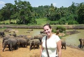 Vrijwilligerswerk in Sri Lanka: Diergeneeskunde & Dierenverzorging