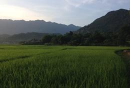 Journalistieke projecten in het buitenland: Vietnam