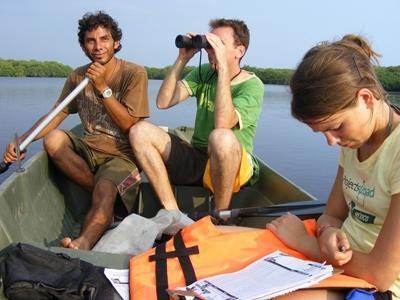 Onderzoek doen bij het natuurbehoud project