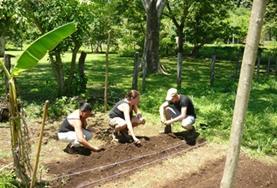 Natuurbehoud & Milieu vrijwilligerswerk in het buitenland: Costa Rica