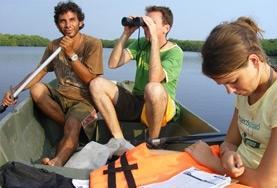 Vrijwilligerswerk in Mexico: Natuurbehoud & Milieu