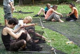 Als vrijwilliger help je bij onderzoek naar de flora en fauna van het Amazone regenwoud in Peru.