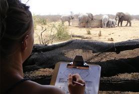 Natuurbehoud & Milieu vrijwilligerswerk in het buitenland: Zuid-Afrika