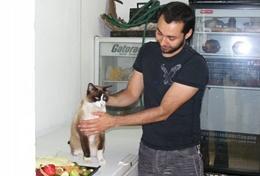 Als ervaren dierenarts is jouw kennis over honden en katten zeer welkom in dierenklinieken in Mexico.