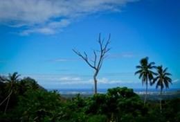 Vrijwilligerswerk in Samoa: Gezondheidszorg