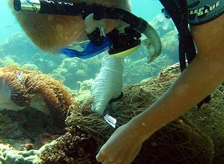 Laatste bestemming wereldreis is natuurbehoud Thailand