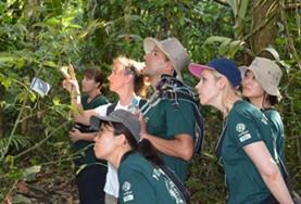 Zet je in voor het behoud van het Amazone regenwoud in Peru door deel te namen aan deze natuurbehoud twintigersreis.