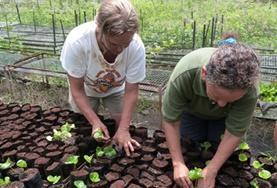 Vrijwilligers van de natuurbehoud volwassenenreis helpen mee in de kwekerij van het Galapagos National Park.