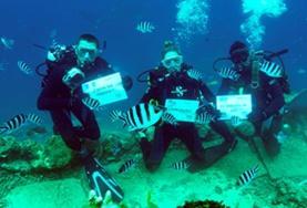 Volwassen vrijwilligers behalen hun duikbrevet tijdens het haaienbeschermings natuurbehoud project in Fiji.